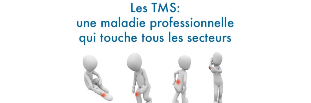 Banniere TMS  et Secteurs d'activites