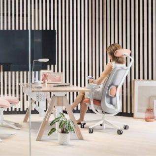 Ergonomie et Design minimaliste Sofi