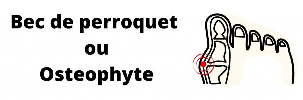 Bec de perroquet ou osteophyte